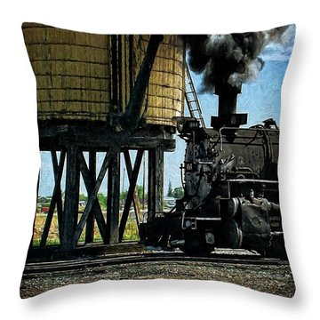 Throw Pillow featuring the photograph Cinders And Water by Ken Smith