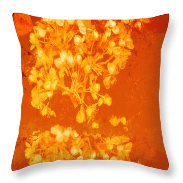 Cinnabar IIi Throw Pillow