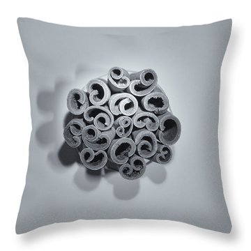 Throw Pillow featuring the photograph Cinnamon Brain by Lora Lee Chapman