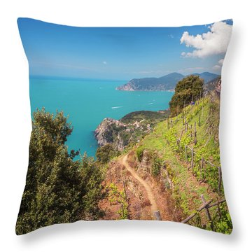 Cinque Terre Italy Vineyard Walk Throw Pillow