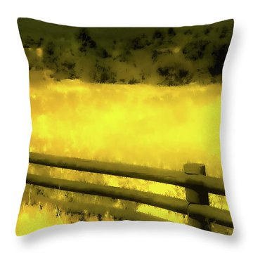 Ciquique Pueblo Meadow 2 Throw Pillow