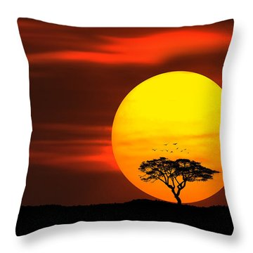 Circle Of Life Throw Pillow by Bess Hamiti