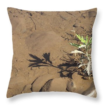 Throw Pillow featuring the photograph Circle Shadow Plant by Marie Neder