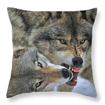 Throw Pillow featuring the photograph Circle by Tony Beck