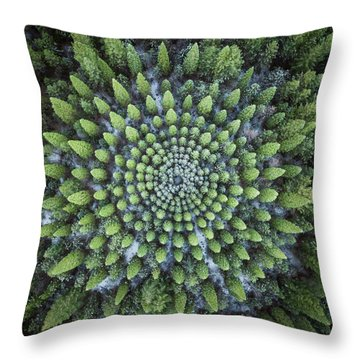 Circular Symmetry Throw Pillow