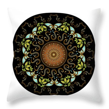 Circularium No. 2611 Throw Pillow by Alan Bennington