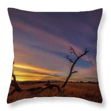 Cirrus Throw Pillow