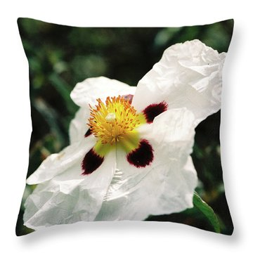 Cistus Rock Rose Side View Throw Pillow