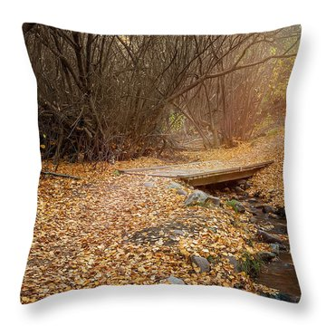 City Creek Throw Pillow