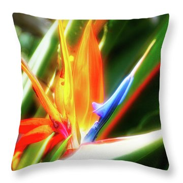 Throw Pillow featuring the photograph City Flare Bird Of Paradise by Aimee L Maher Photography and Art Visit ALMGallerydotcom