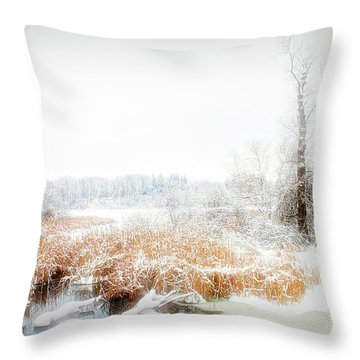 Throw Pillow featuring the photograph City Flare Winters Glory by Aimee L Maher Photography and Art Visit ALMGallerydotcom