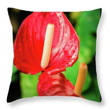 City Garden Flowers Throw Pillow