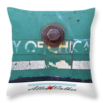 City Of Chi 1 Throw Pillow