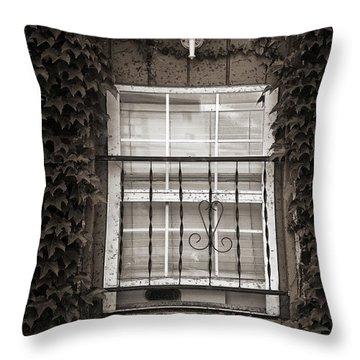 City Window Detail Throw Pillow