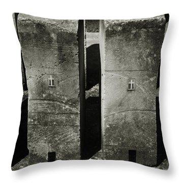 Unusual Throw Pillows