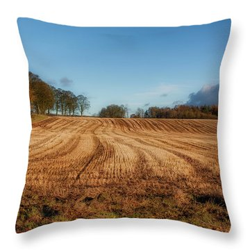 Throw Pillow featuring the photograph Clackmannanshire Countryside by Jeremy Lavender Photography