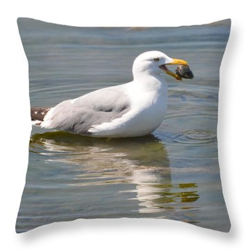 Clamming Throw Pillow by Dan Williams