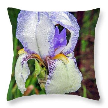 Clarabelle Iris Throw Pillow