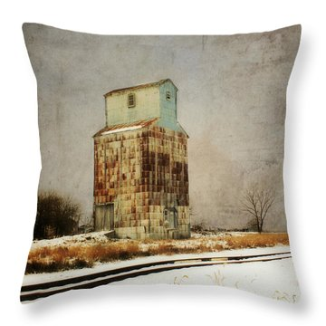 Throw Pillow featuring the photograph Clare Elevator by Julie Hamilton