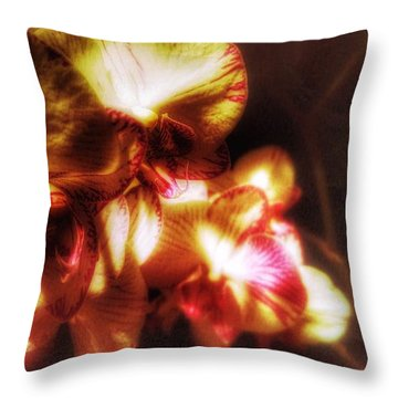 Throw Pillow featuring the photograph Clarissa by Isabella F Abbie Shores FRSA