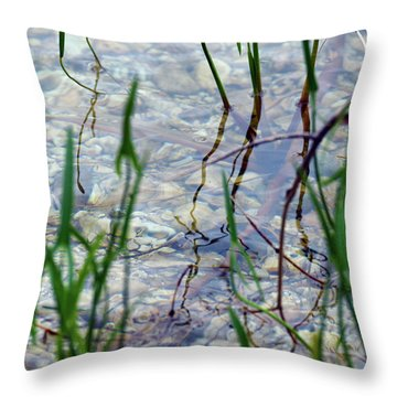 Throw Pillow featuring the photograph Clarity by Sally Sperry