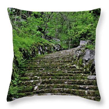 Throw Pillow featuring the photograph Clark Reservation  by Suzanne Stout