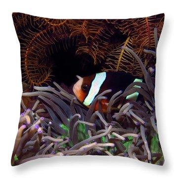 Clark's Anemonefish, Indonesia 2 Throw Pillow