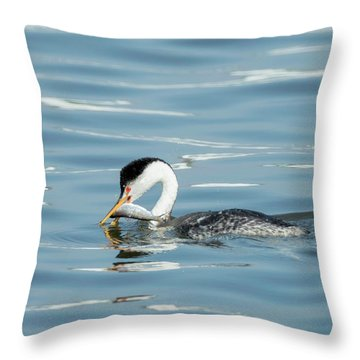 Throw Pillow featuring the photograph Clarks Grebe by Everet Regal