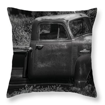 Classic Curves  Throw Pillow