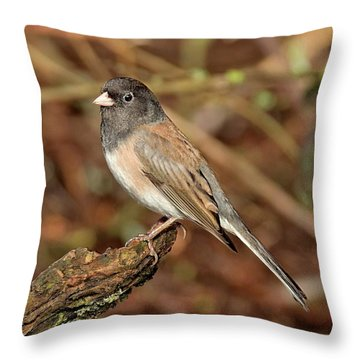 Classic Throw Pillow
