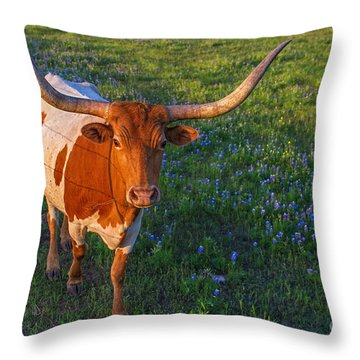 Classic Spring Scene In Texas Throw Pillow