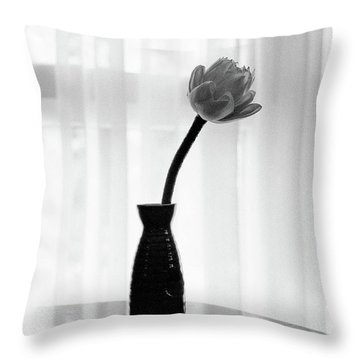 Classic White Lotus Flower In Vase Throw Pillow