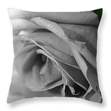 Classic White Rose Throw Pillow