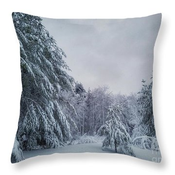 Classic Winter Scene In New England  Throw Pillow