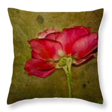 Classy Beauty Throw Pillow by Claudia Ellis