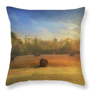 Throw Pillow featuring the photograph Clayton Morning Mist by Lori Deiter