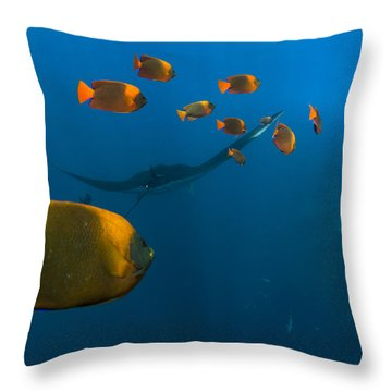 Cleaners Throw Pillow