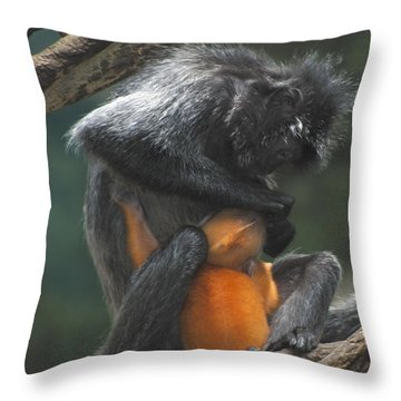 Throw Pillow featuring the photograph Cleaning Baby by Richard Bryce and Family