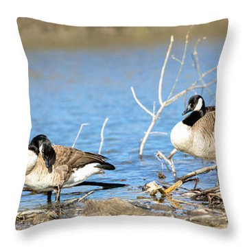 Cleaning On Debris Throw Pillow