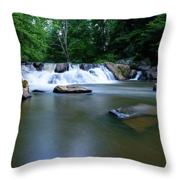 Clear Creek Throw Pillow