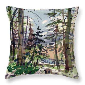 Clear Lake Throw Pillow by Donald Maier