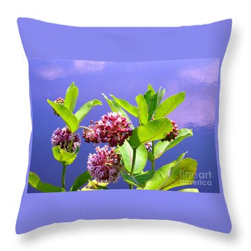 Clear Simple Beauty Throw Pillow