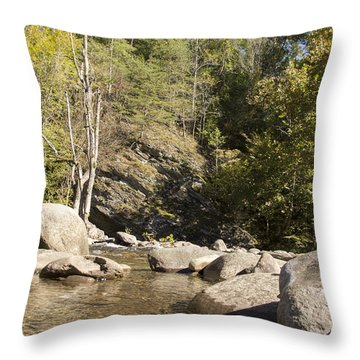 Clear Water Stream Throw Pillow
