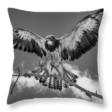 Cleared For Landing 2 Throw Pillow