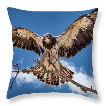 Cleared For Landing Throw Pillow