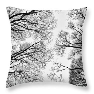 Clearings Throw Pillow