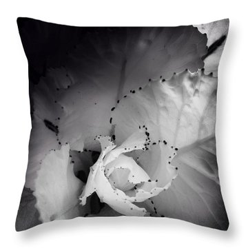 Clearly Bloomed Throw Pillow