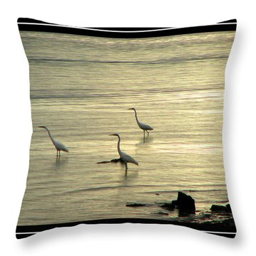 Clearwater Beach Throw Pillow by Carolyn Marshall