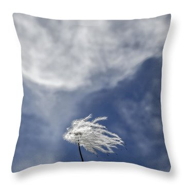 Clematis And Clouds Throw Pillow