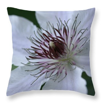 Clematis Throw Pillow by Betsy LaMere